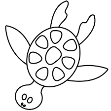 colorful animal sea turtle coloring book svg colouringbook org