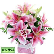buy flowers online flowers online gold coast australia delivery january botanique