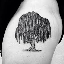 weeping willow search tattoos