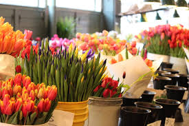 seattle flowers the flowers of pike place market in seattle bluebirds and