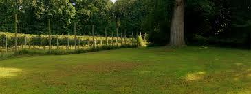 thanksgiving farm harvest yoga at thanksgiving farm winery u2013 maryland wines club