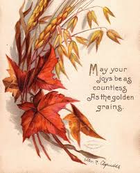 best 25 thanksgiving graphics ideas on illustrated