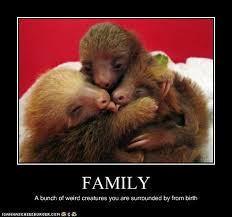 Group Hug Meme - animal capshunz you of course are totally normal i can has
