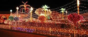 jamaican decorations rainforest islands ferry