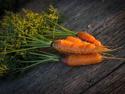 texas farmer tells you everything you need to know about carrots