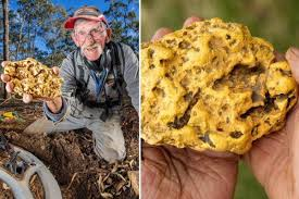 ex binman finds one of the largest gold nuggets ever discovered