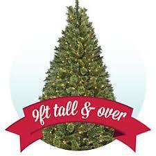 tree shop sears