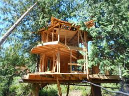 Best Treehouse The Best Of Prefab Tree House Designs U2014 Tedx Decors