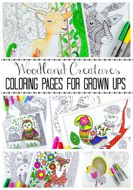 woodland creatures colouring pages here come the girls