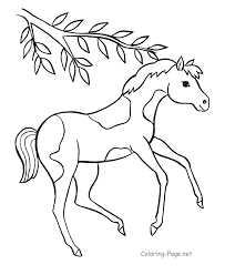baby horse coloring pages to print