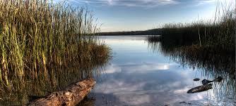 Garden State Rocks by Lake Mineral Wells State Park U0026 Trailway U2014 Texas Parks U0026 Wildlife