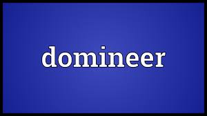 domineer meaning youtube