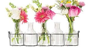 Display Vase Small Bud Glass Vases In Black Metal Rack Stand Window Sill