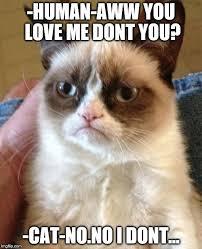 You Love Me Meme - you no love me meme 4iam