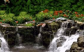 waterfall garden the gardens