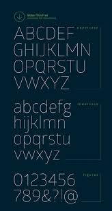 Best Font Type For Resume by Best 25 Sans Serif Ideas Only On Pinterest Modern Sans Serif