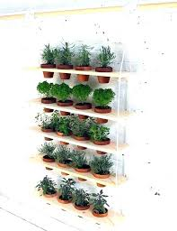 lights to grow herbs indoors indoor herb pots indoor herb garden low light best growing herbs