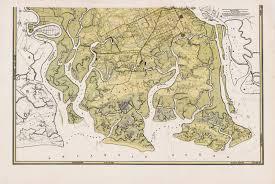 Savannah Ga Map A Rare And Impressive Map Of Chatham County Georgia Rare