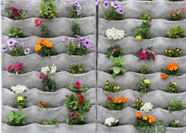 Vertical Wall Garden Plants garden how refreshing with vertical garden in our ecofriendly