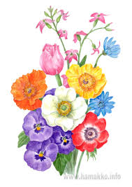 Spring Flower Bouquets - botanical art botanical painting flower painting bouquet of