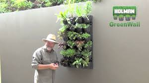 holman greenwall creating a vertical or horizontal display youtube