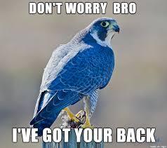Blue Meme - the military folks here will understand meme on imgur