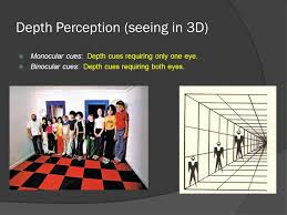 Blind In One Eye Depth Perception Sensation And Perception Ppt Download