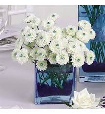 weddings at affordable flowers delivery royal oak mi affordable