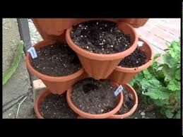 Vertical Garden Pot - stacking pot lettuce vertical garden youtube