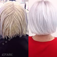 shimmer lights shoo before and after from brassy to classy ice white hair modern salonpre lightened