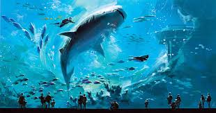 Most Amazing by Fish Tank Top Largest Aquariums In Thed Georgia Aquariumds Most