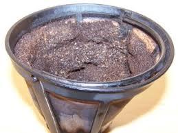 fourmis dans la cuisine astuces avec le marc de café poison pour fourmis et engrais