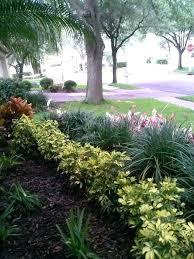Landscape Garden Ideas Uk Shady Landscaping Ideas Shade Garden Shade Garden Ideas Uk