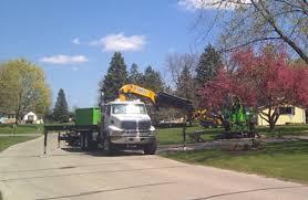 tree service milwaukee equipment tree removal milwaukee tree