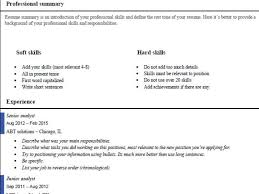 Job Summary For Resume by 100 Example Professional Summary For Resume Professional
