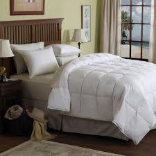Pacific Coast Feather Bed Bedroom Pacific Coast Comforter With Luxury Pattern And Wooden