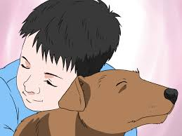 how to convince your parents to let you have a pet 13 steps
