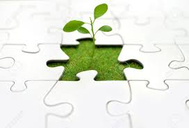 plant jigsaw stock photo picture and royalty free image image