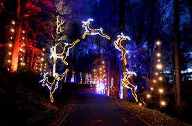 tanglewood christmas lights nc christmas lights at tanglewood clemmons nc another must see
