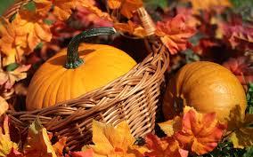 autumn pumpkin wicker basket food 1920x1200