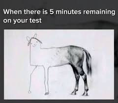 Meme Test - when there is 5 minutes remaining on your test meme xyz