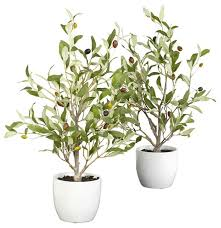 silk olive trees with vases set of 2 traditional artificial