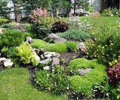 Diy Rock Garden Diy Rock Landscaping Brilliant Rock Garden Best Rock Garden