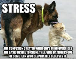 Stressed Out Memes - stress the confusion created when one s mind overrides the basic