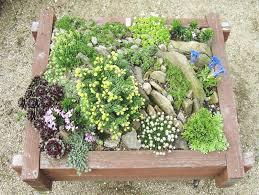 first small rock garden design ideas alices garden small rock