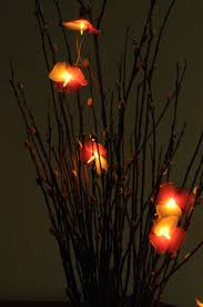 62 best kinky liqueur pretty patio images on pinterest cocktails 20 flower handmade in pink sahde color string light patio decorate wedding bedroom living room party lantern deco