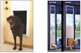 Patio Pacific Pet Doors Pet Doors For Doors Cat U0026 Dog Doors Petdoors Com