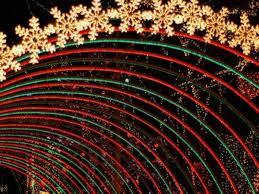 christmas lights train ride nov 24 2017 holiday light festival train griffith park los