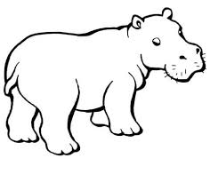 baby hippo coloring free printable coloring pages