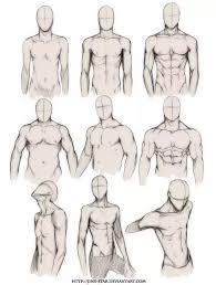 what are some tips for drawing anatomy for beginners updated
